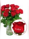 Catalogues & collections Florajet ALLAIRE : Les roses marquées
