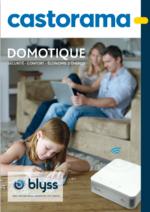 Catalogues et collections Castorama : Le catalogue Domotique