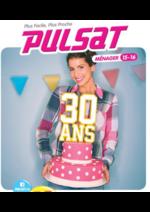 Catalogues et collections Pulsat : Guide ménager & multimédia 2015 -  2016