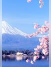 Japon à partir de 1995? par personne