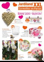 Prospectus Jardiland : Bonne Saint-Valentin !
