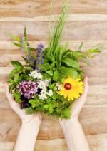 Promos et remises Truffaut : Super prix sur les fleurs de printemps