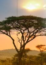 Catalogues et collections Corsair : Partez découvrir Dakar à partir de 496€