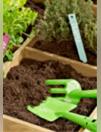 La sélection jardinage
