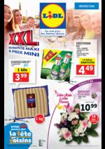 Prospectus Lidl : XXL quantité maxi à prix mini
