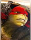 Les Tortues Ninja sont de retour !