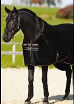 Catalogues et collections Horse Wood : Les nouveautés sont là !