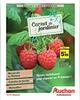 ProspectusAuchan- Carnet du jardinier