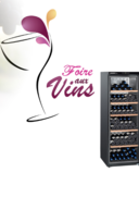 Catalogues et collections EURONICS CITY LOCHES : La foire aux vins