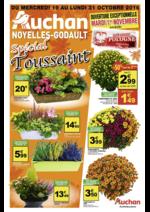 Prospectus Auchan : Spécial Toussaint