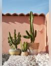 Galets et graviers pour aménager votre jardin