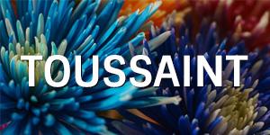 Toussaint FR