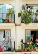 Promos et remises  : Vive l'été !