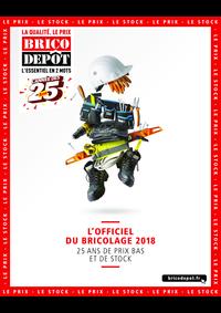 Catalogues et collections Brico Dépôt : L'officiel du bricolage 2018