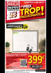 Prospectus Brico Dépôt : Les prix trop hallucinants !