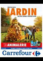 Prospectus Carrefour : Bien plus qu'un jardin