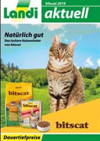 Prospectus Landi Boll - Vechigen : Bitscat Katzenfutter 2019