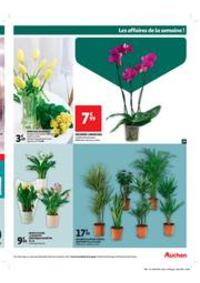 Prospectus Auchan Le Kremlin-Bicêtre : fleur