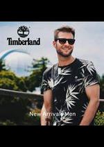 Prospectus Timberland : New In Men