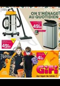 Prospectus Gifi : Gifi des idées de Génie!