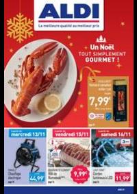 Prospectus Aldi Fâches-Thumesnil : Un Noël tout simplement gourmet!