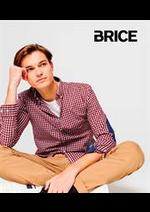 Catalogues et collections Brice : Nouveautés