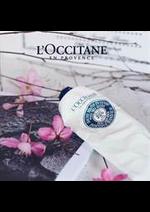 Catalogues et collections L'Occitane : Trends Folder