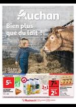 Prospectus Auchan : Bien plus que du lait !