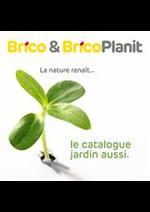 Prospectus Brico : Les actions